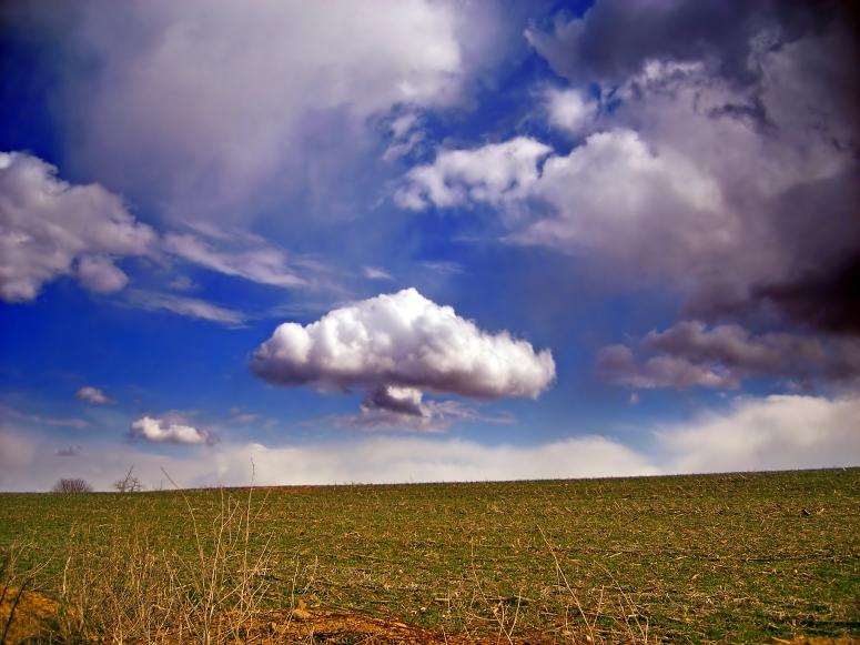 Flickr_-_Nicholas_T_-_Calm